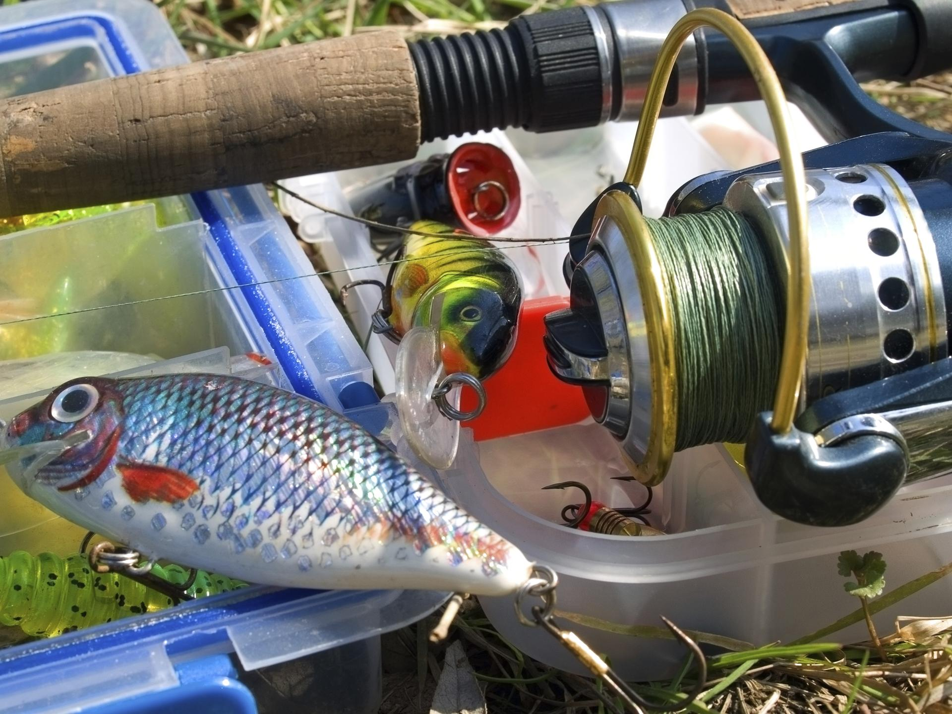 Catching grayling on Tyrolean rod. Tyrolean wand: how to catch 61